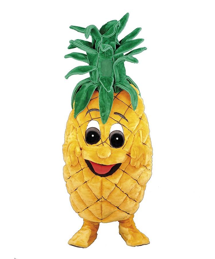 Ananas 164c Kostüm Karneval Angebote Maskottchen